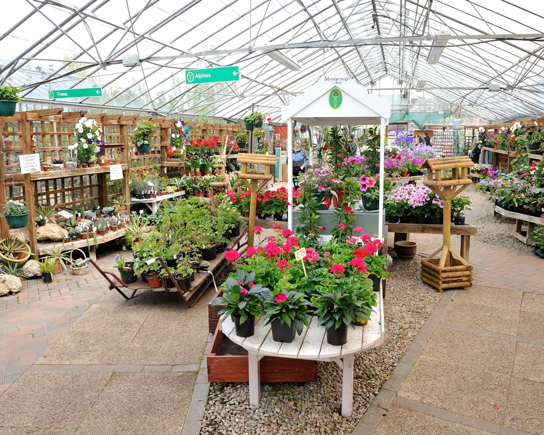 Plant World Gardens At Myerscough College
