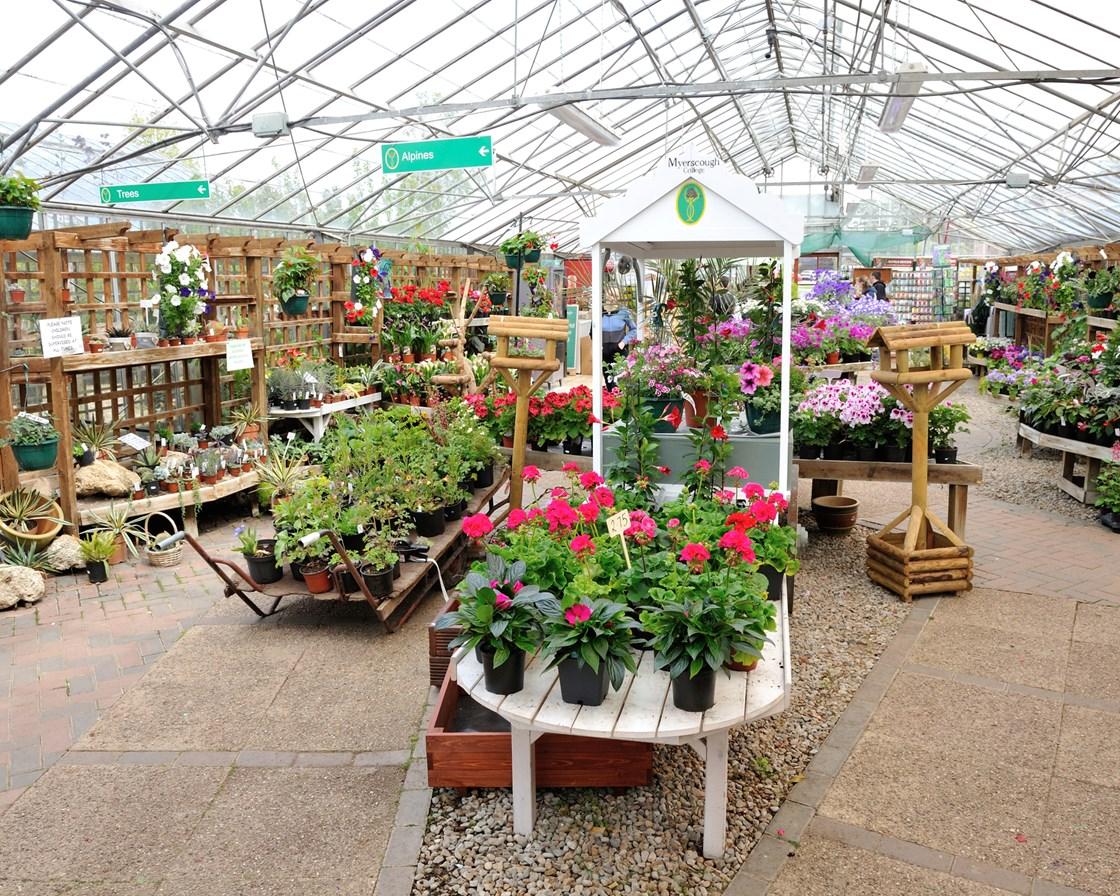 Plant World Gardens – Plant World Nursery and Garden Center