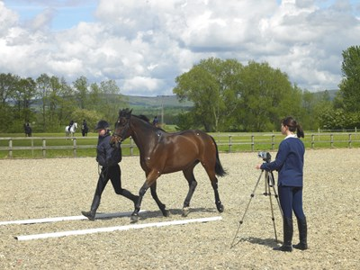 Myerscough College - one of Britain's leading equine colleges
