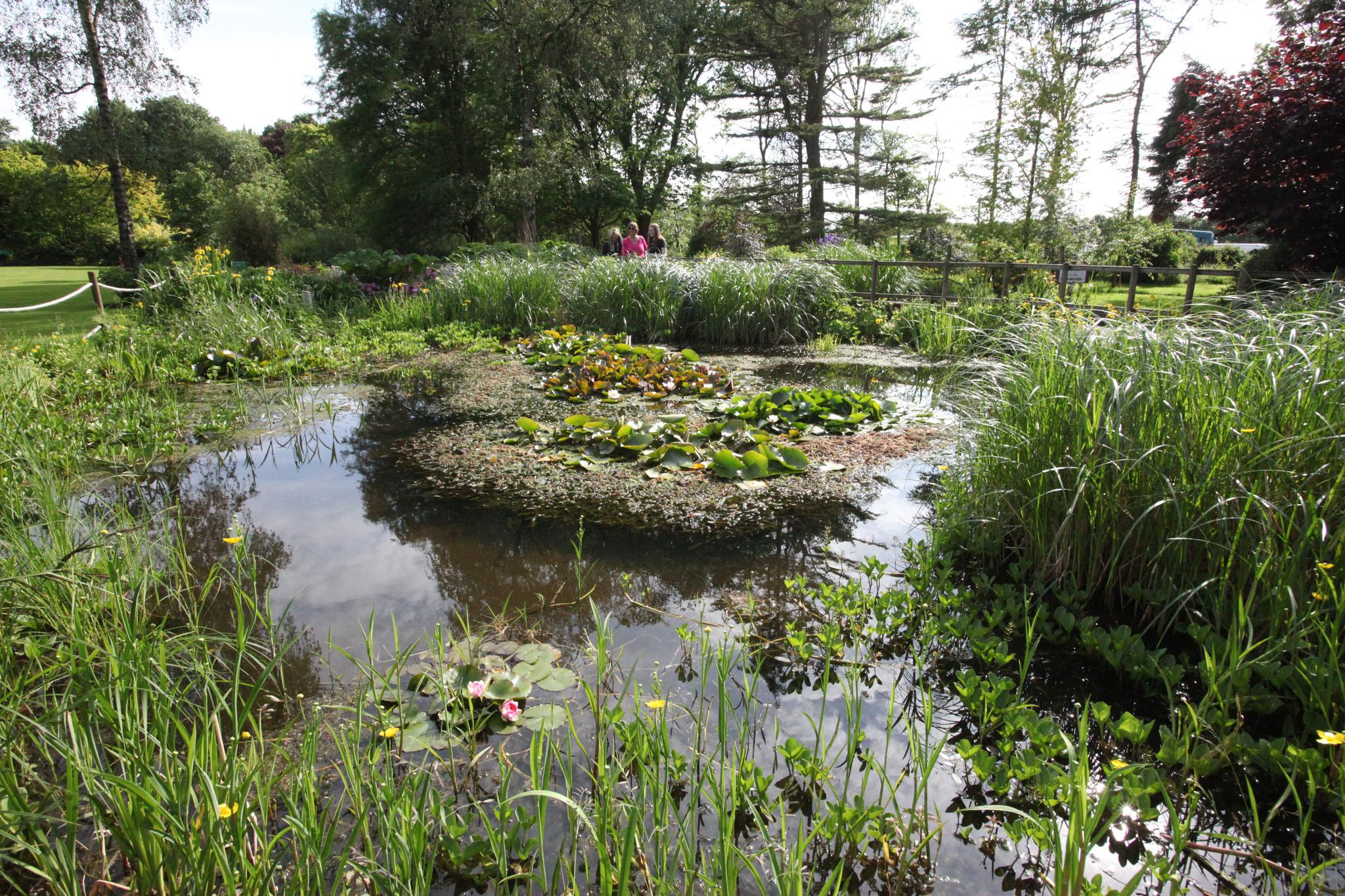 Our Landscaped Gardens Part 81