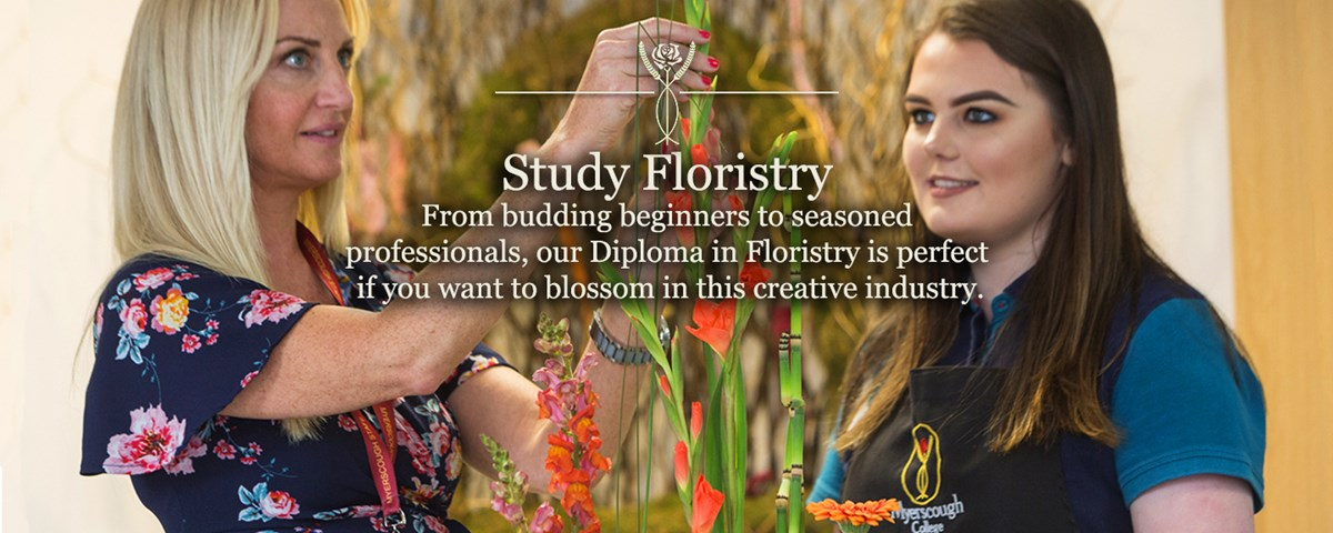 Floristry, Diploma, College, Myerscough