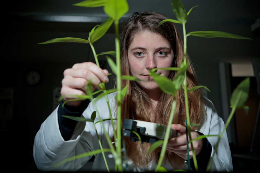 Myerscough College student with plants in the college laboratory.