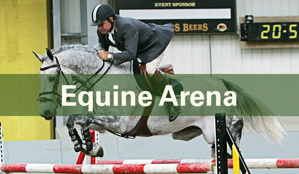 Commercial Services Hero Equine Aerna Banner Template