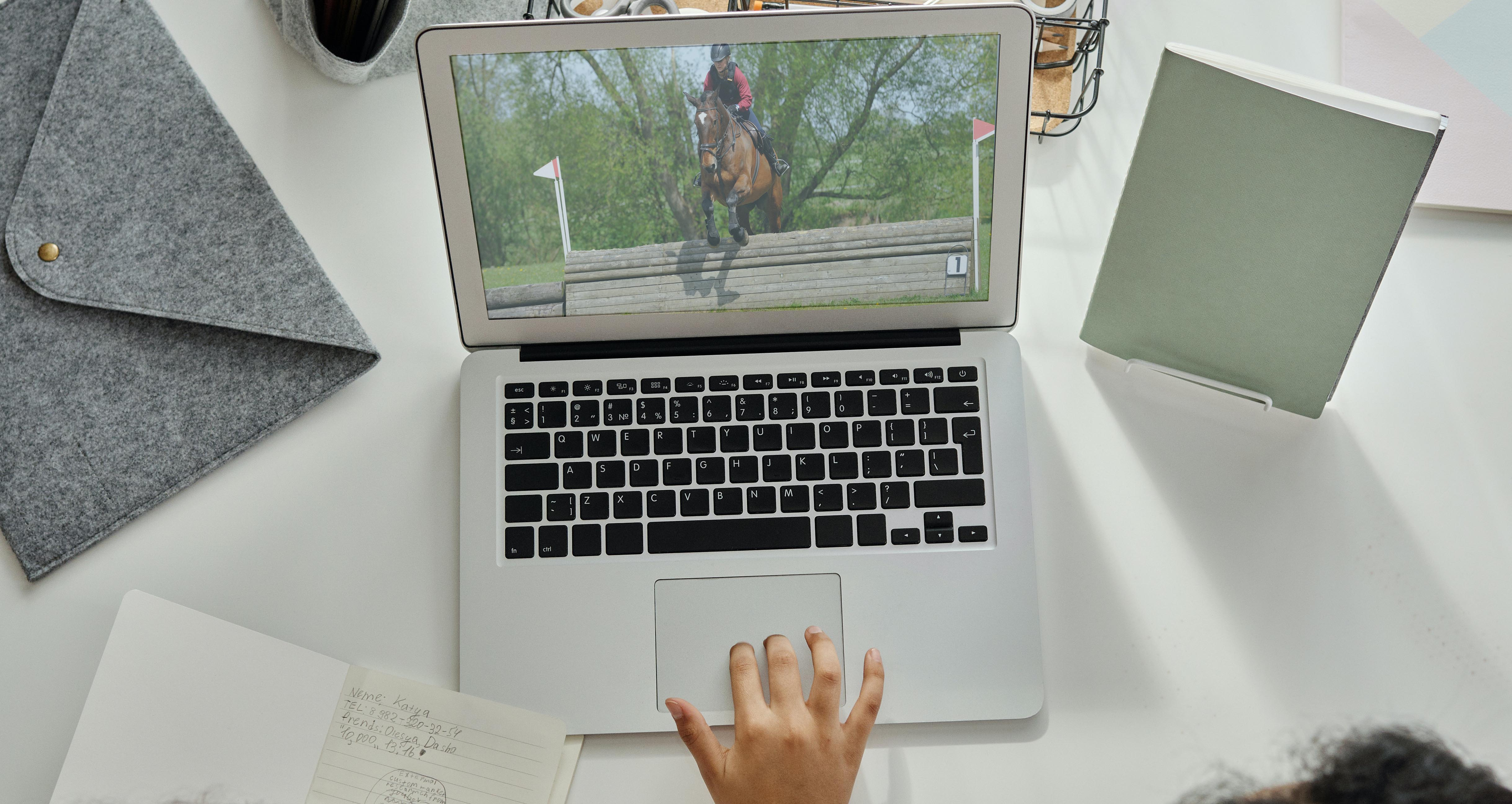 Develop your passion for horses online with our range of Online Equine short courses in Behaviour, Health or Nutrition.